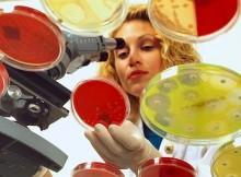 microbiologist1